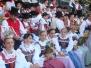 Landesfestumzug 2009